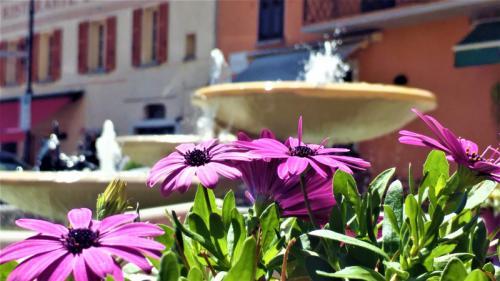 Piazza Roma Argegno